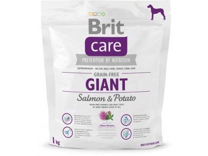 Brit Care Grain Free Giant Salmon & Potato 1kg (expirace: 6.11.2021)