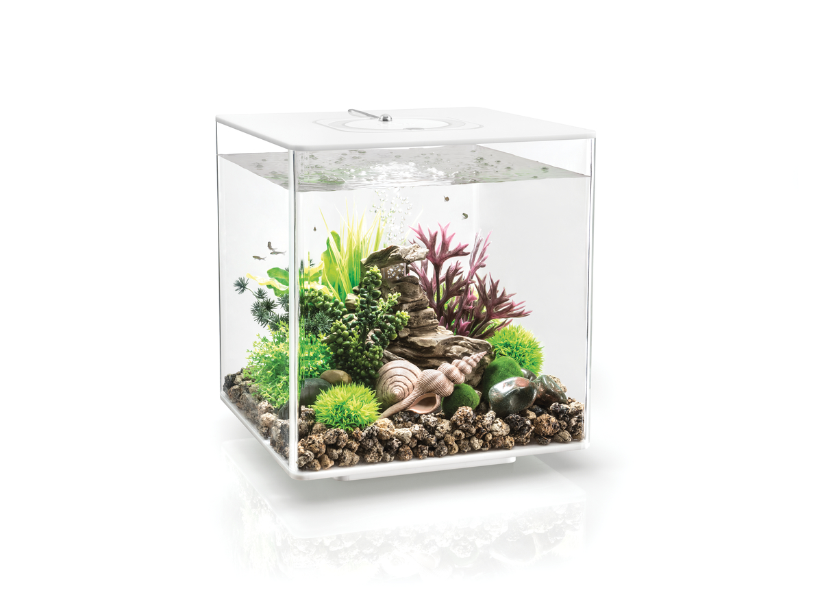 Akvárium BIORB CUBE LED bílé 30l