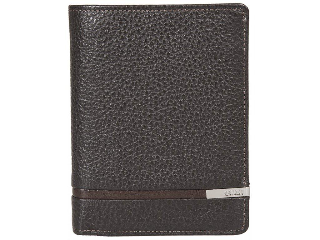 Pánská kožená peněženka GIUDI Kai - hnědá