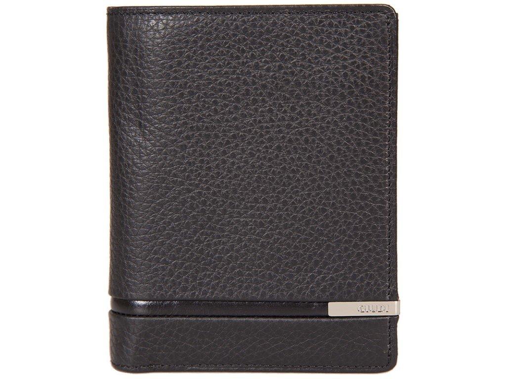Pánská kožená peněženka GIUDI Owen - černá
