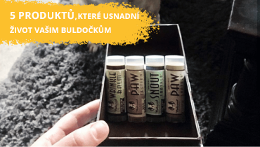 5 produktů, které usnadní život vašim Buldočkům!