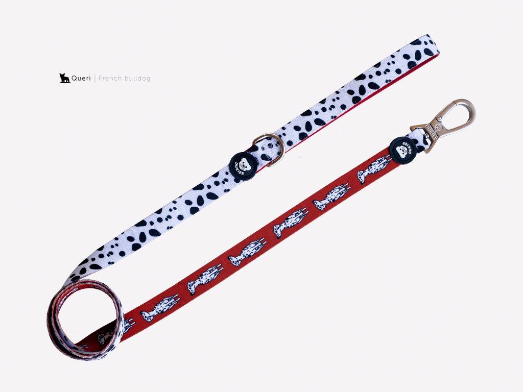 dalmatian lead for dogs 366204 2000x
