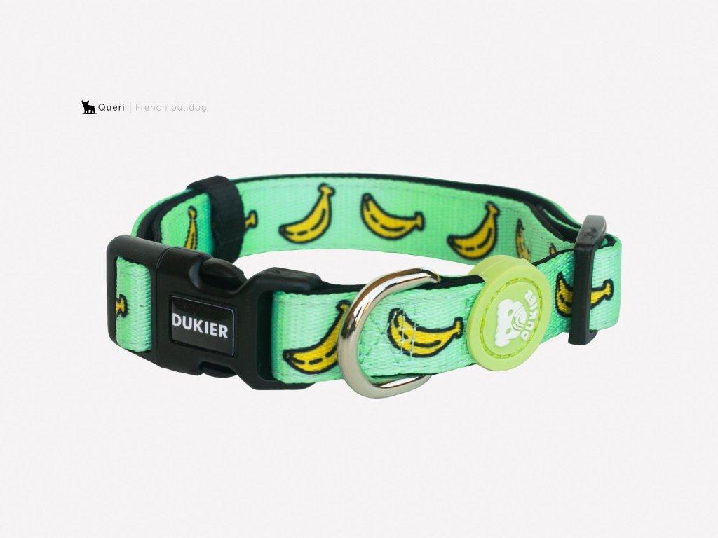 banana dog collar 284753 2000x