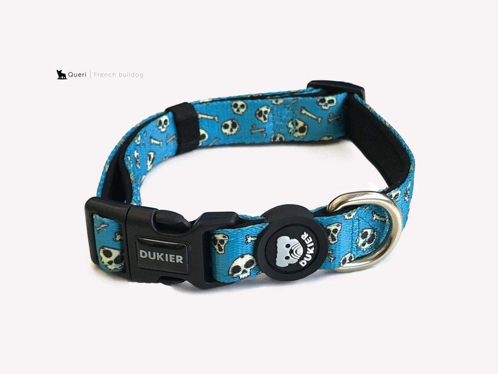dog skulls collar 519719 2000x