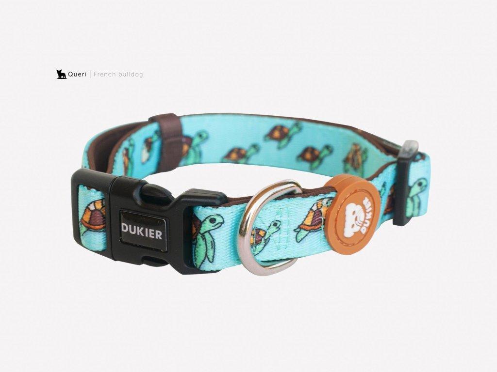 turtle dog collar 511871 2000x