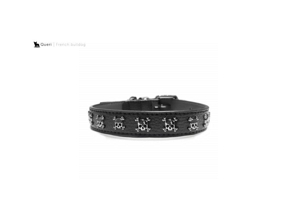 calavera leather dog collar