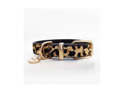 leopard leather collar
