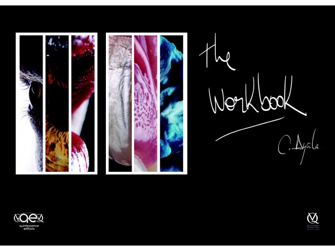 20991 Cover Ayala The Workbook(1)