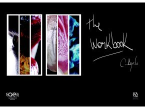 20991 Cover Ayala The Workbook(1)