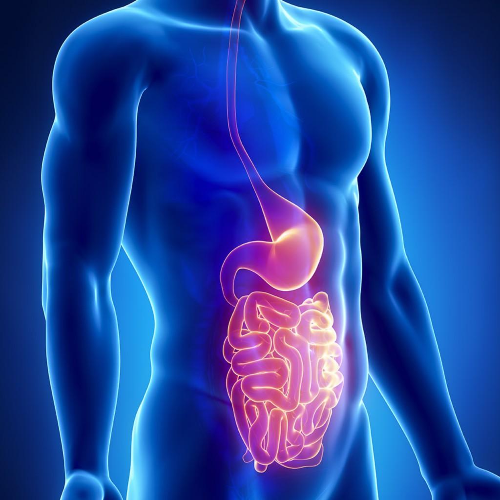 Mořská plazma pomáhá přirozeně bojovat s gastroenteritidou
