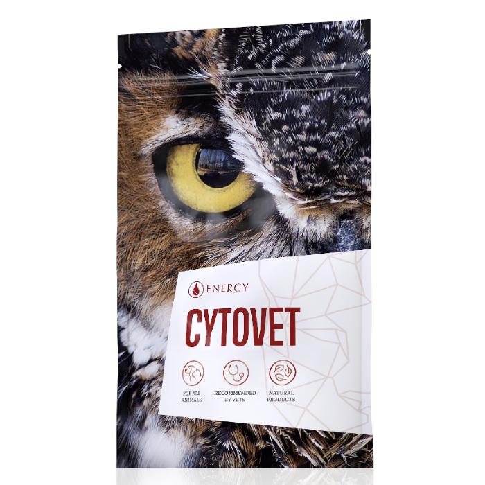 Energy Cytovet 90 kapslí