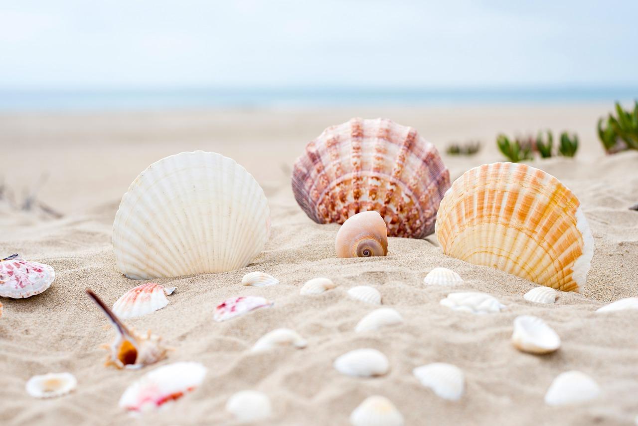 Na dovolenou s barevným pískem