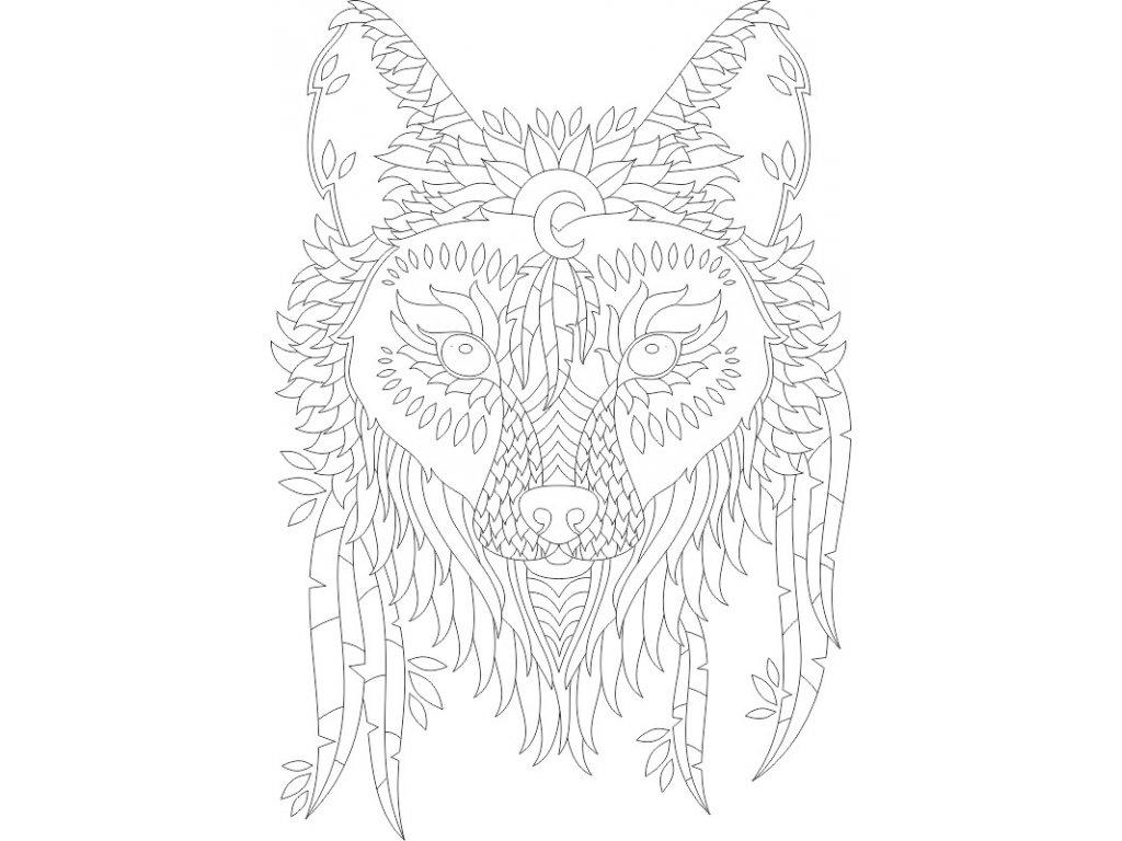A3 indiansky vlk