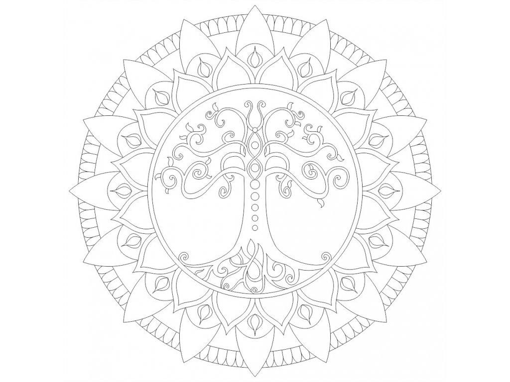 mandala strom zivota (53) 300x300