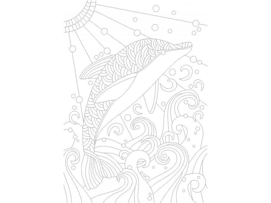 delfin mandala a4