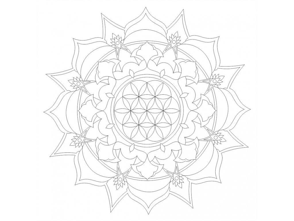 Kvet zivota v mandale (52) 300x300