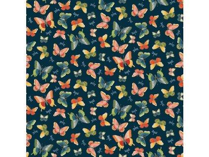 2334 B butterflies