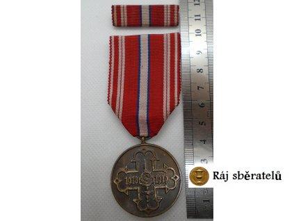 MEDAILE PRO ČSR DOBROVOLNÍKY 1918-1919