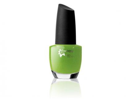 Fantasy Nails - Lak na nechty Color č.73 15ml