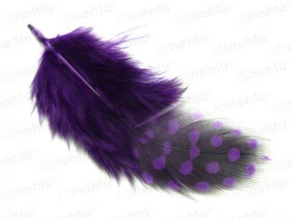 Peříčka 3 ks - paví očka, fialová