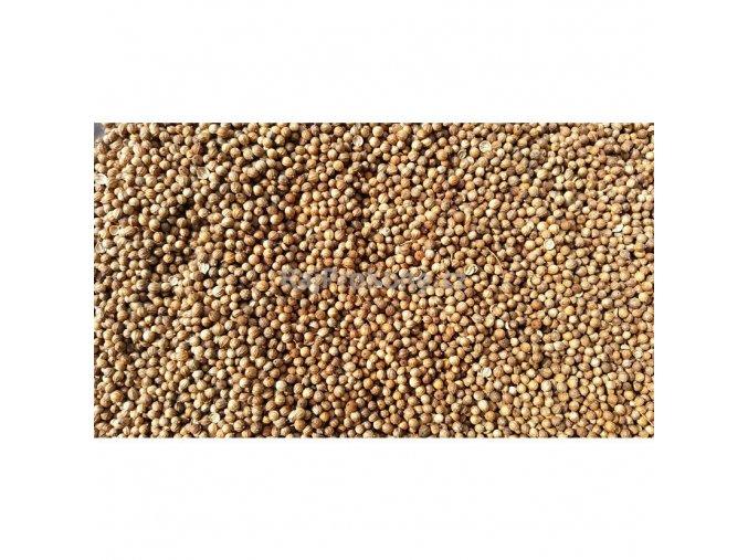 Koriandr semeno, 1 kg