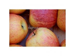 Sušené jablečné kostičky, 500 g