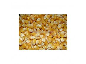 Kukuřice zrno, 50 kg