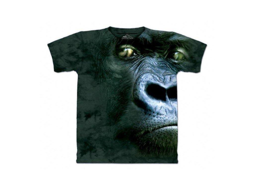 Portrét Gorily
