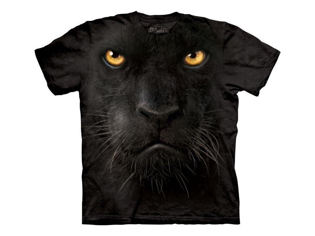 černý kočička na koni kohout