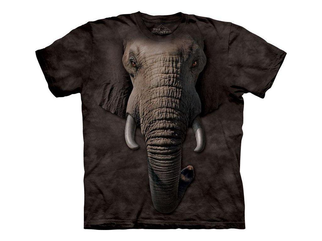 Sloní tvář - 2017