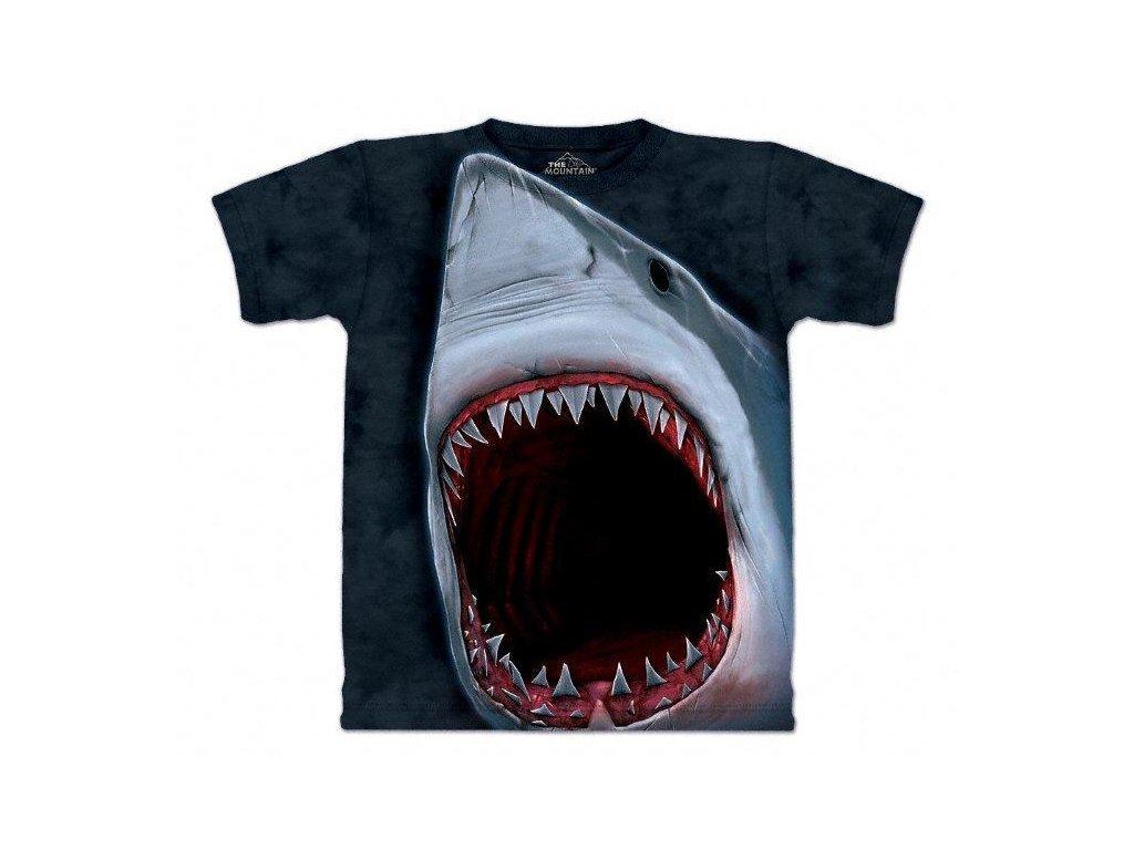Žraločí čelisti - 2017