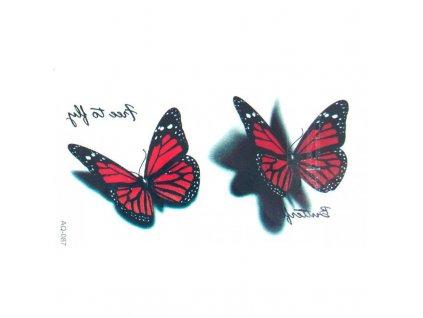 Barevné Tetování Motýl AQ-087