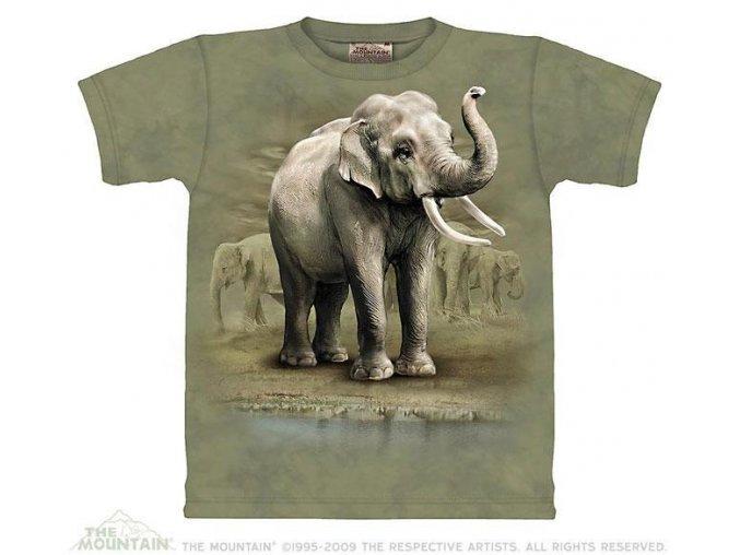 Tričko Sloni - Asian Elephants - Dětské