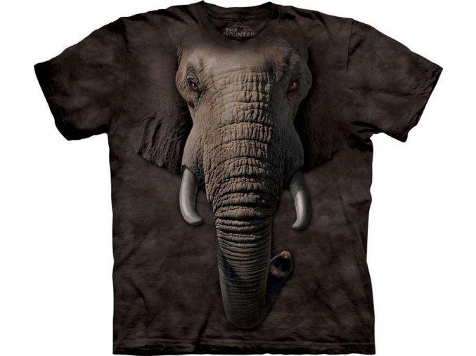 Sloní tvář
