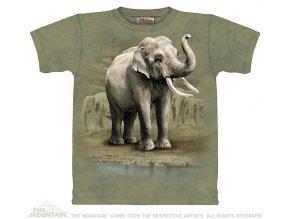 Tričko Sloni - Asian Elephants - Dětské - 2017