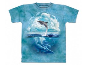 Delfíni nebe