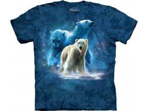 Koláž ledních medvědů