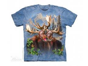 15 4980 kids t shirt