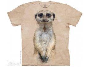 10 5961 t shirt
