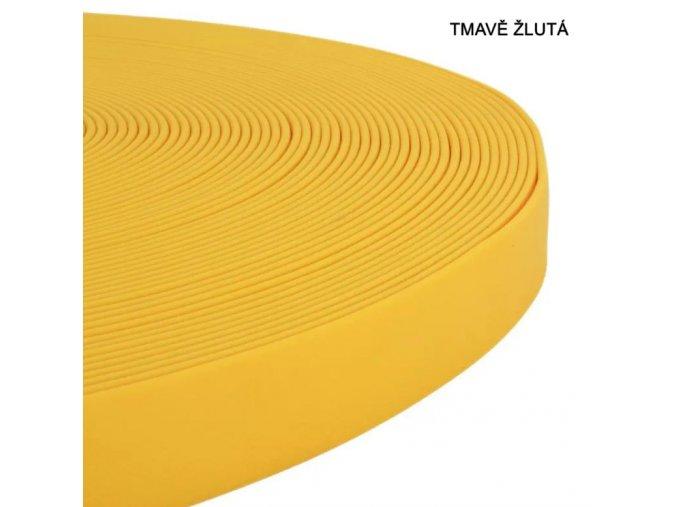 Žlutá tmavá slunečnicová