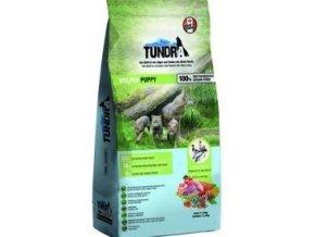 Tundra Puppy