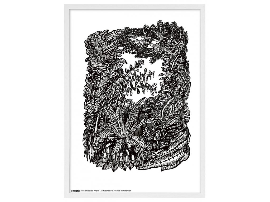 Rámeček Anet s ilustrací bílý 50x70