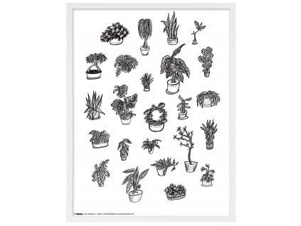 Rámeček Anet s ilustrací bílý 60x80