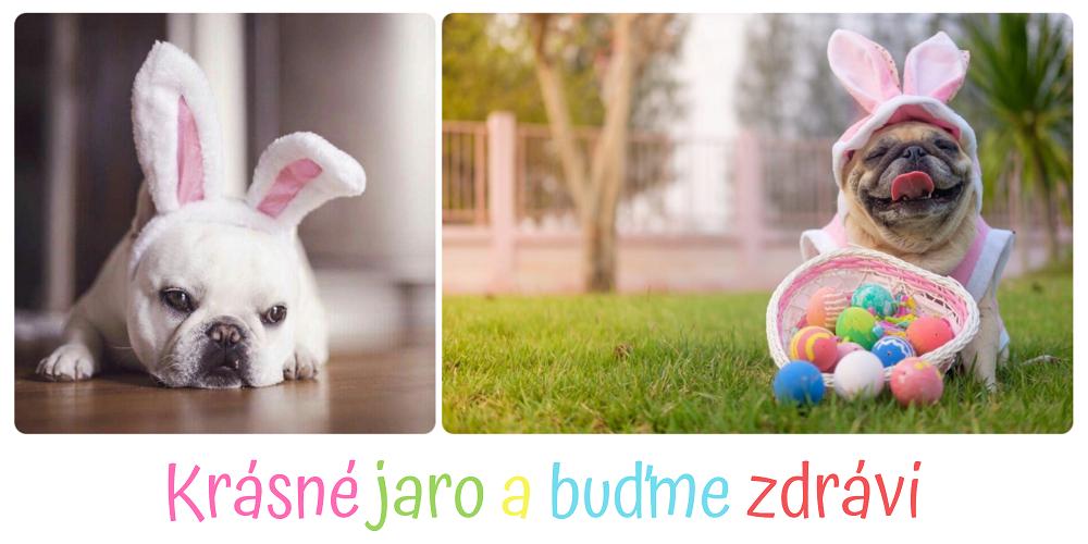Raťafáci.cz - JARO 2020