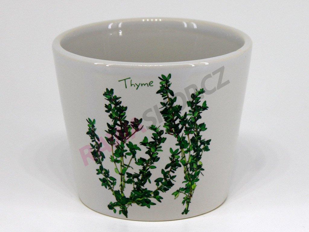 Květináč tymián