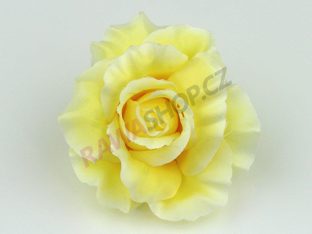 Růže 456 - světle žlutá