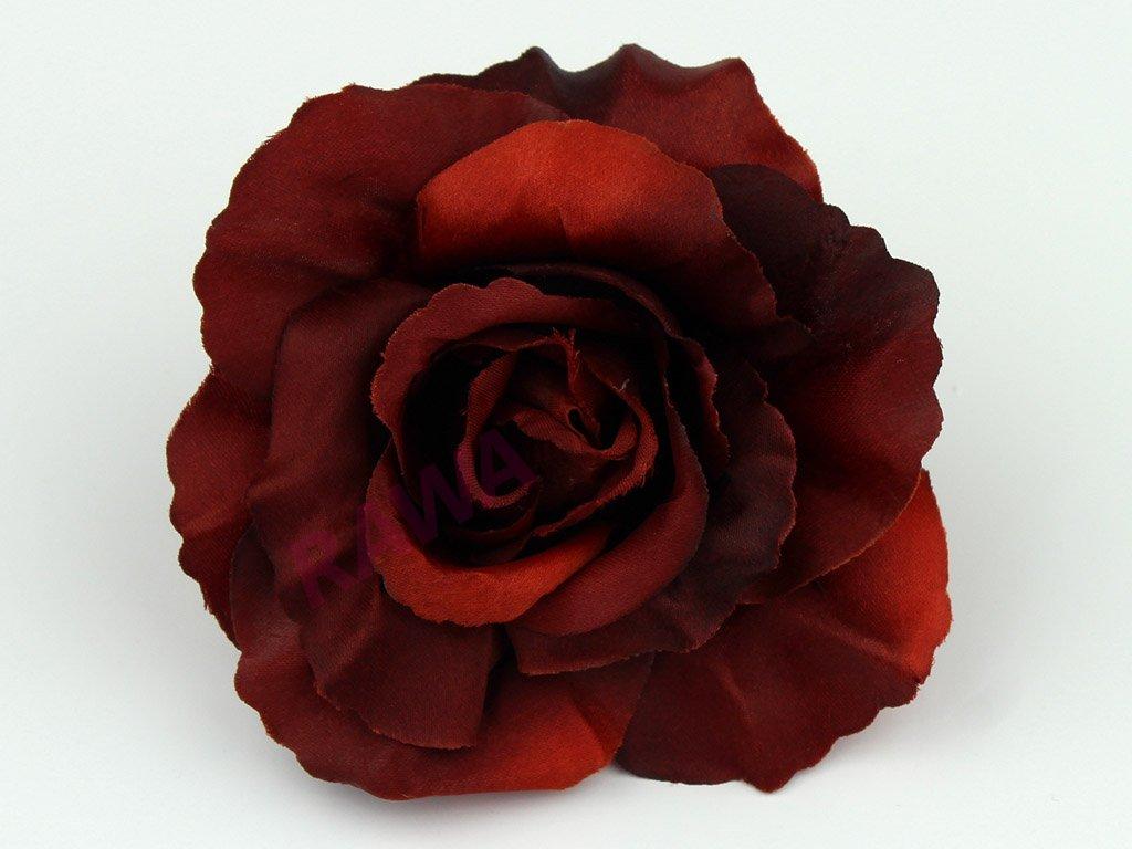 Růže 456 - bordó