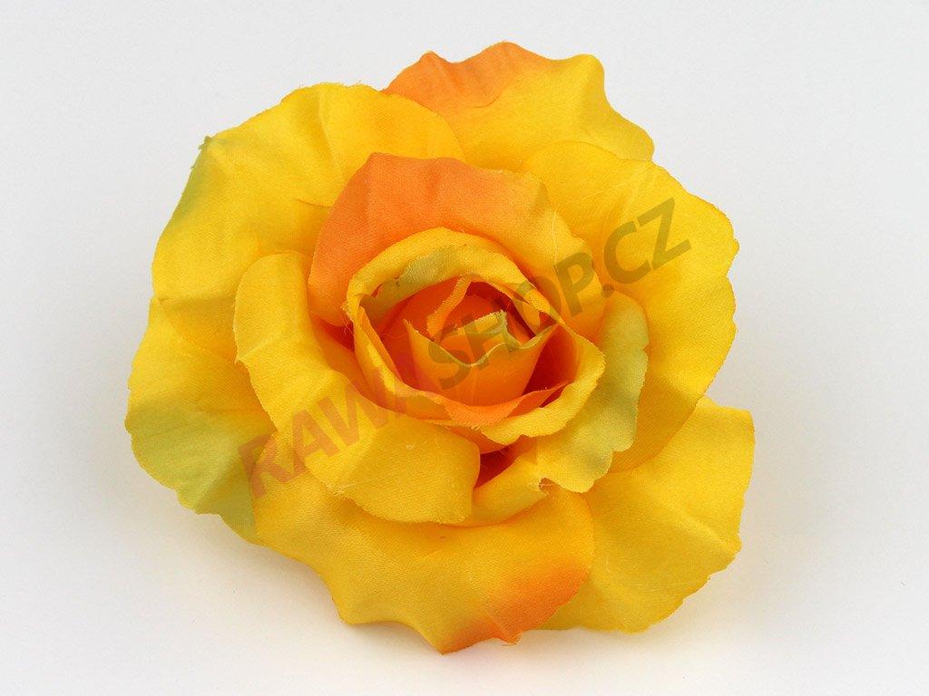 Růže 456 - tmavě žlutá