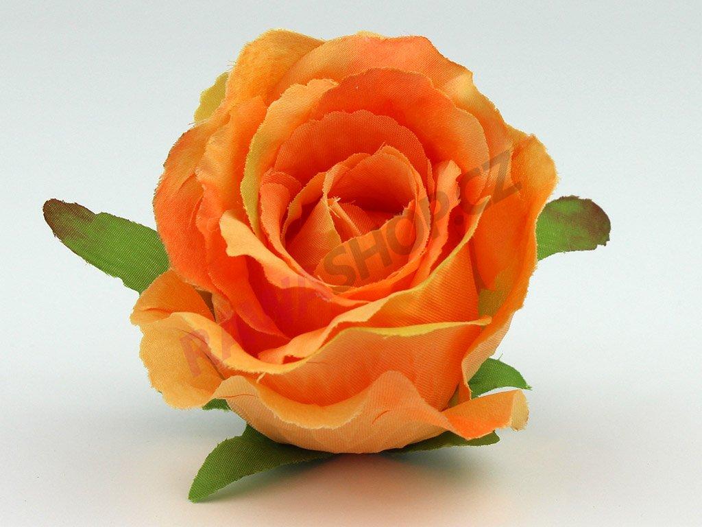 Růže 23069 - pomerančová