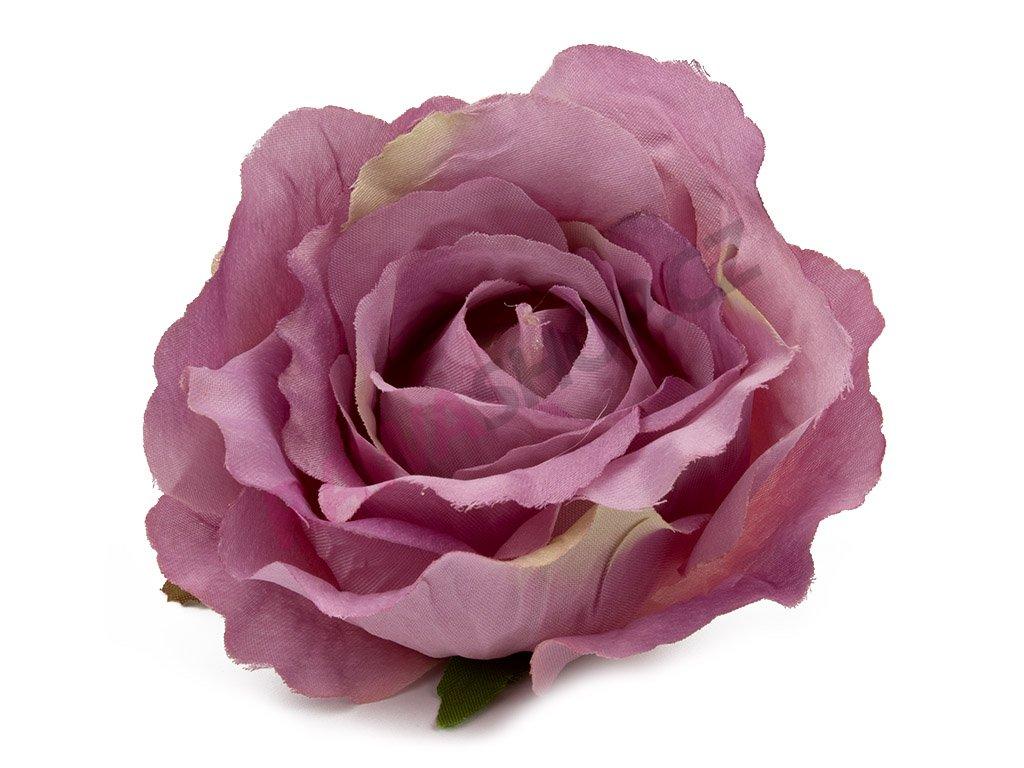 Růže 23069 - tmavý vřes/zelená